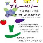 夏野菜祭りポスター