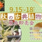 2017秋の古典植物展示