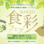 食彩フェア_WEB用1029