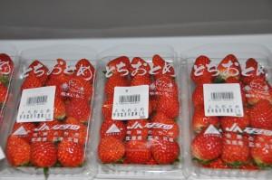 イチゴ 2